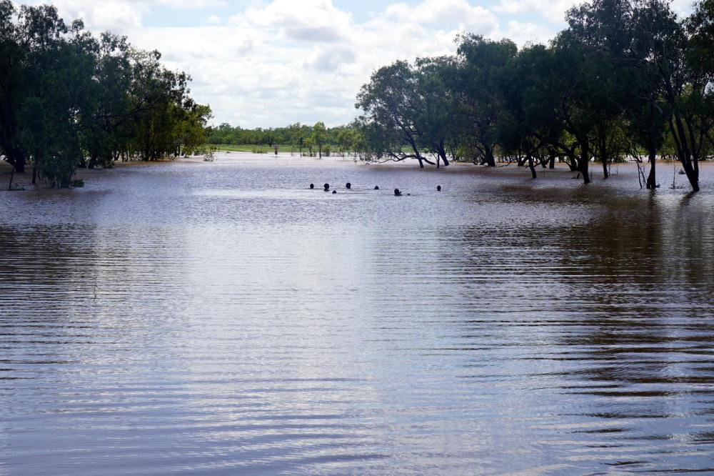 rikki_fitzroycrossing_local_youths_enjoying_floods